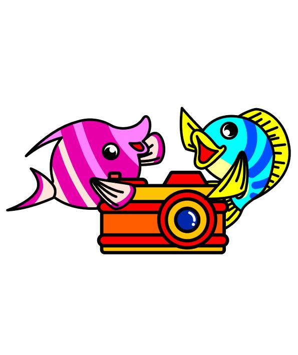 あきのはるの, イラスト, イラストレーター, イラスト作成, カメラ, キャラクター, キャラクター作成, 魚,カメラ,熱帯魚,
