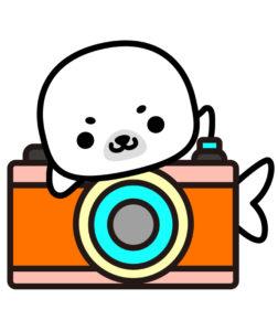 こまあざらし,カメラ,あきのはるの, イラスト, イラストレーター, イラスト作成, キャラクター, キャラクター作成,